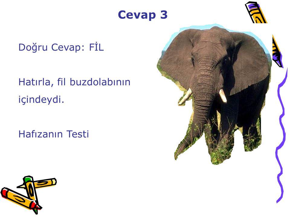 Cevap 3 Doğru Cevap: FİL Hatırla, fil buzdolabının içindeydi. Hafızanın Testi