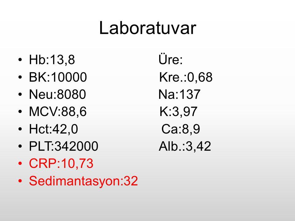 Laboratuvar Hb:13,8 Üre: BK:10000 Kre.:0,68 Neu:8080 Na:137 MCV:88,6 K:3,97 Hct:42,0 Ca:8,9 PLT:342000 Alb.:3,42 CRP:10,73 Sedimantasyon:32
