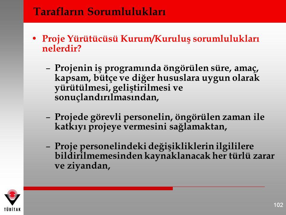 Proje Yürütücüsü Kurum/Kuruluş sorumlulukları nelerdir.