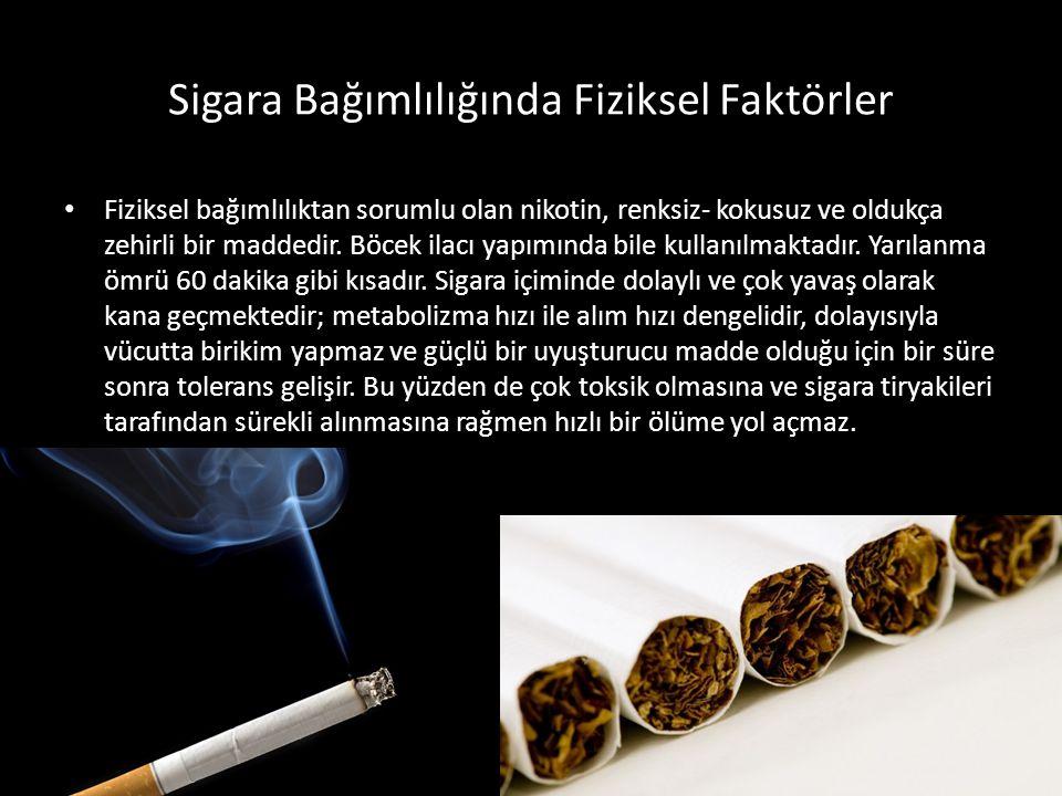 Sigara Bağımlılığında Fiziksel Faktörler Fiziksel bağımlılıktan sorumlu olan nikotin, renksiz- kokusuz ve oldukça zehirli bir maddedir. Böcek ilacı ya
