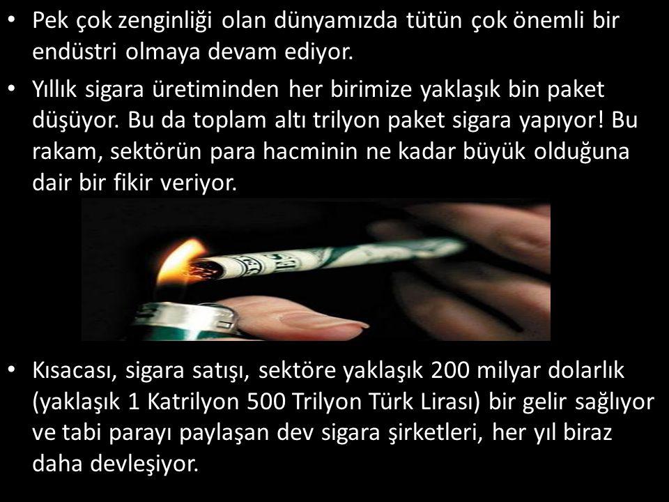 Pek çok zenginliği olan dünyamızda tütün çok önemli bir endüstri olmaya devam ediyor. Yıllık sigara üretiminden her birimize yaklaşık bin paket düşüyo