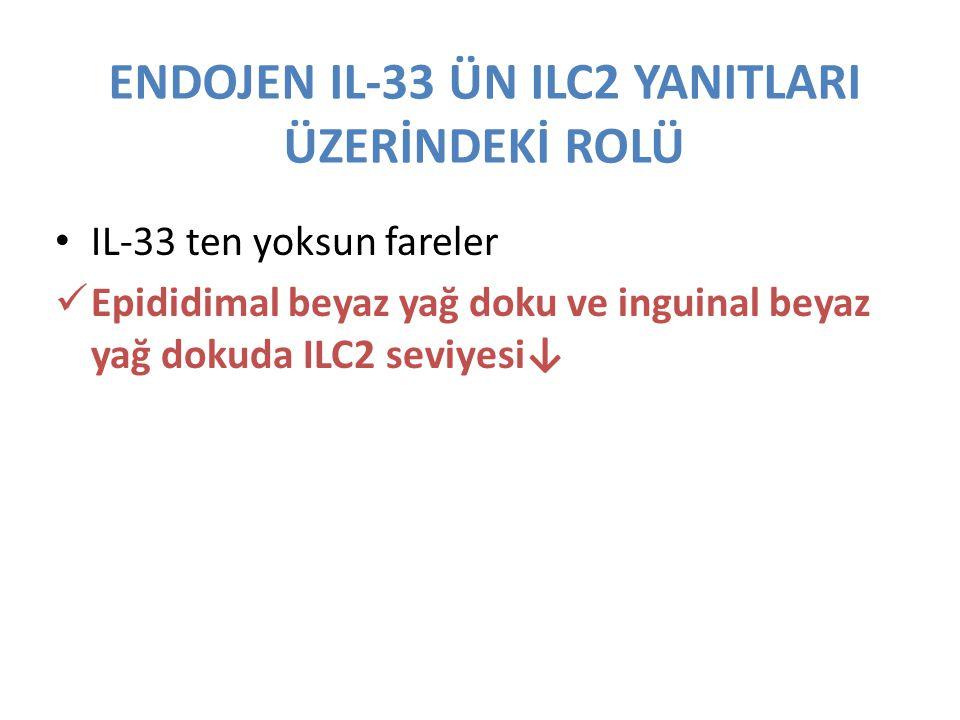 ENDOJEN IL-33 ÜN ILC2 YANITLARI ÜZERİNDEKİ ROLÜ IL-33 ten yoksun fareler Epididimal beyaz yağ doku ve inguinal beyaz yağ dokuda ILC2 seviyesi↓