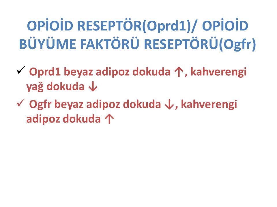 OPİOİD RESEPTÖR(Oprd1)/ OPİOİD BÜYÜME FAKTÖRÜ RESEPTÖRÜ(Ogfr) Oprd1 beyaz adipoz dokuda ↑, kahverengi yağ dokuda ↓ Ogfr beyaz adipoz dokuda ↓, kahvere