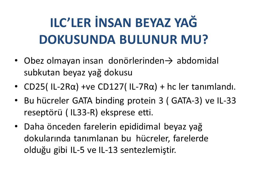 ILC'LER İNSAN BEYAZ YAĞ DOKUSUNDA BULUNUR MU? Obez olmayan insan donörlerinden→ abdomidal subkutan beyaz yağ dokusu CD25( IL-2Rα) +ve CD127( IL-7Rα) +