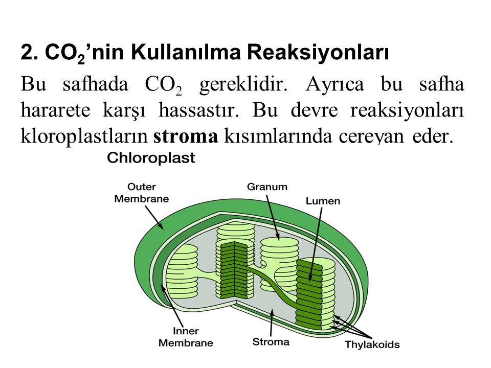 2.CO 2 'nin Kullanılma Reaksiyonları Bu safhada CO 2 gereklidir.