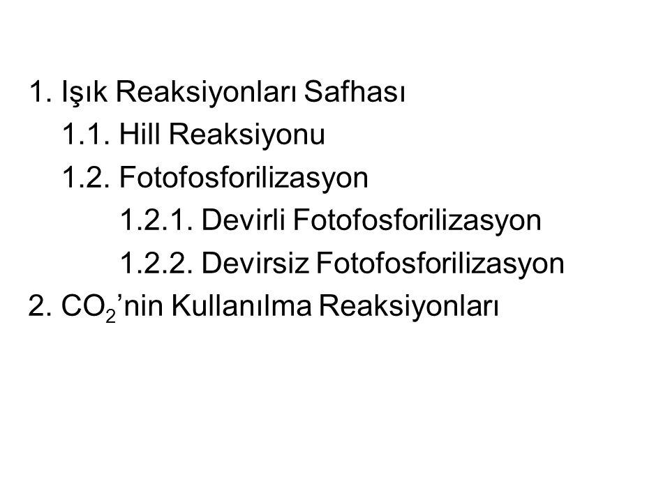 1.Işık Reaksiyonları Safhası 1.1. Hill Reaksiyonu 1.2.