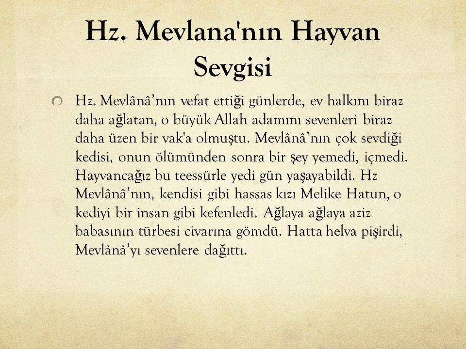 Hz. Mevlana'nın Hayvan Sevgisi Hz. Mevlânâ'nın vefat etti ğ i günlerde, ev halkını biraz daha a ğ latan, o büyük Allah adamını sevenleri biraz daha üz