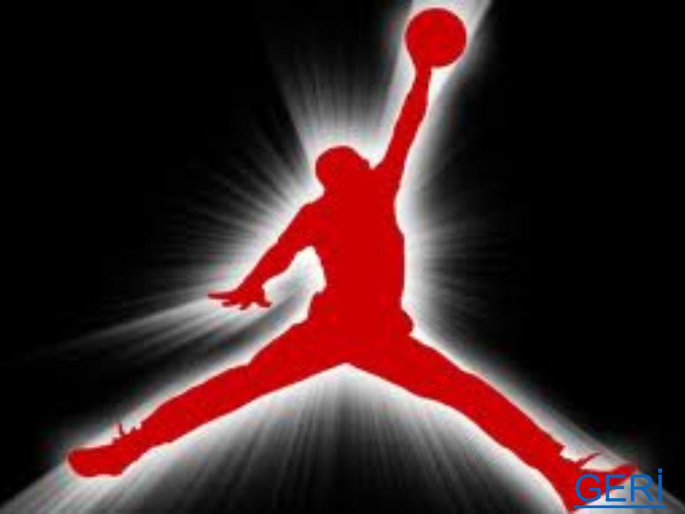 ÖDÜL ALDIĞI YILLARI  ALDIĞI ÖDÜLLER YILLARA GÖRE  NBA Şampiyonluğu: 1991, 92, 93, 96, 97, 98 NBA Yılın Çaylağı: 1985 NBA En İyi Çaylak 5 i: 1985 En iyi 5: 1987, 88, 89, 90, 91, 92, 93, 96, 97, 98 NBA Yılın Savunma Oyuncusu:1988 Yılın Savunma 5 i: 1988, 89, 90,91, 92, 93, 97, 98 NBA MVP: 1988, 91, 92, 96, 98 NBA Finalleri MVP: 1991, 92, 93, 96, 97, 98 NBA Smaç Şampiyonu: 1987, 88 GERİ