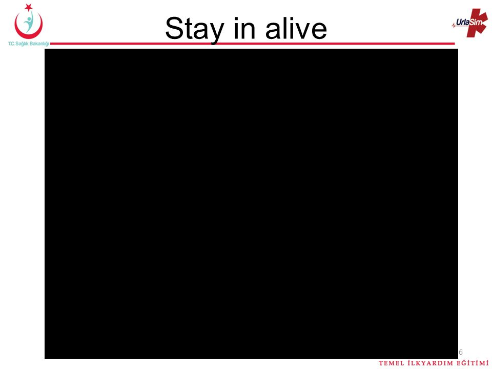 Stay in alive 6