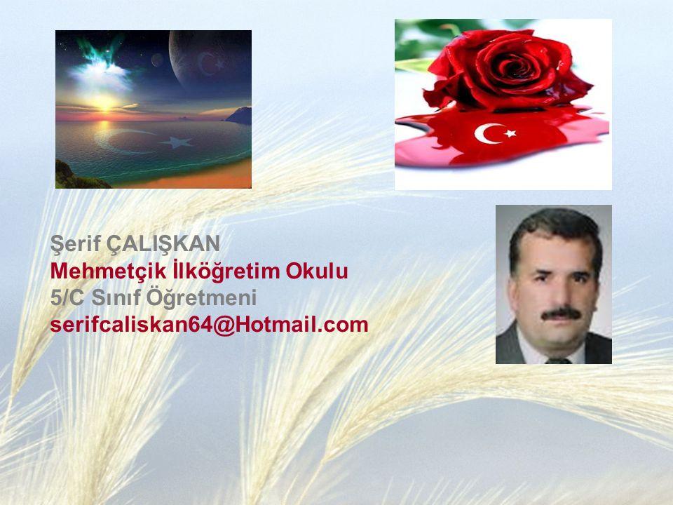 Şerif ÇALIŞKAN Mehmetçik İlköğretim Okulu 5/C Sınıf Öğretmeni serifcaliskan64@Hotmail.com