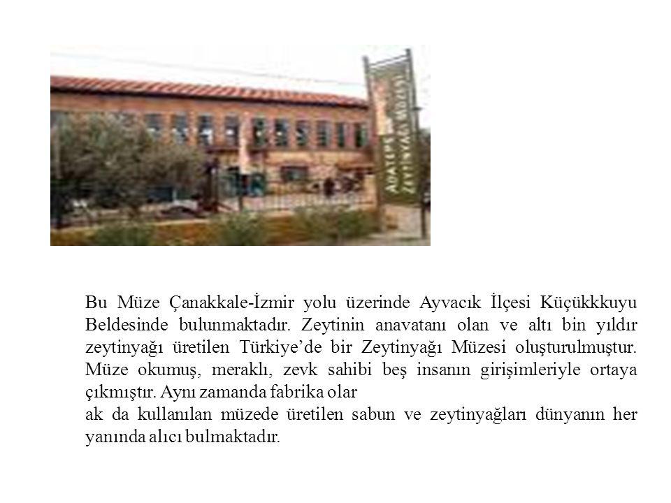 Bu Müze Çanakkale-İzmir yolu üzerinde Ayvacık İlçesi Küçükkkuyu Beldesinde bulunmaktadır. Zeytinin anavatanı olan ve altı bin yıldır zeytinyağı üretil
