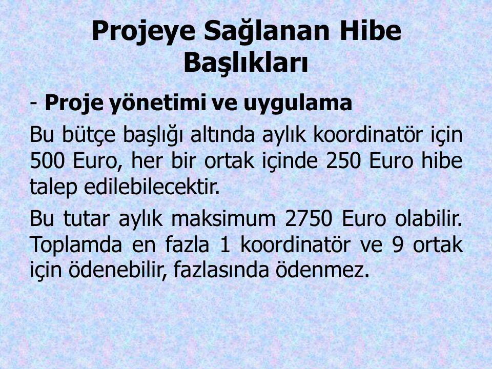 Projeye Sağlanan Hibe Başlıkları - Proje yönetimi ve uygulama Bu bütçe başlığı altında aylık koordinatör için 500 Euro, her bir ortak içinde 250 Euro