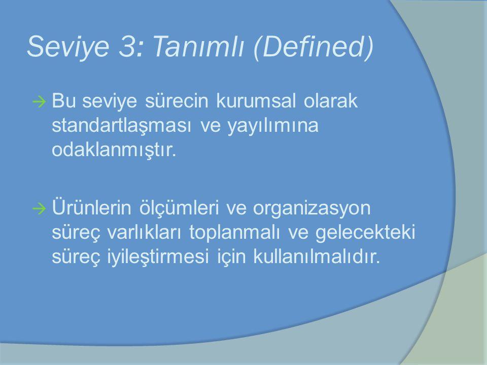 Seviye 3: Tanımlı (Defined)  Bu seviye sürecin kurumsal olarak standartlaşması ve yayılımına odaklanmıştır.  Ürünlerin ölçümleri ve organizasyon sür