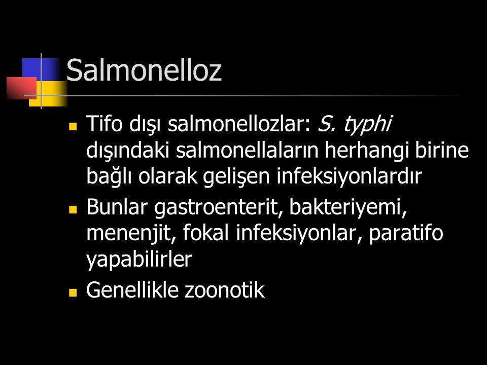 Salmonelloz Tifo dışı salmonellozlar: S. typhi dışındaki salmonellaların herhangi birine bağlı olarak gelişen infeksiyonlardır Bunlar gastroenterit, b