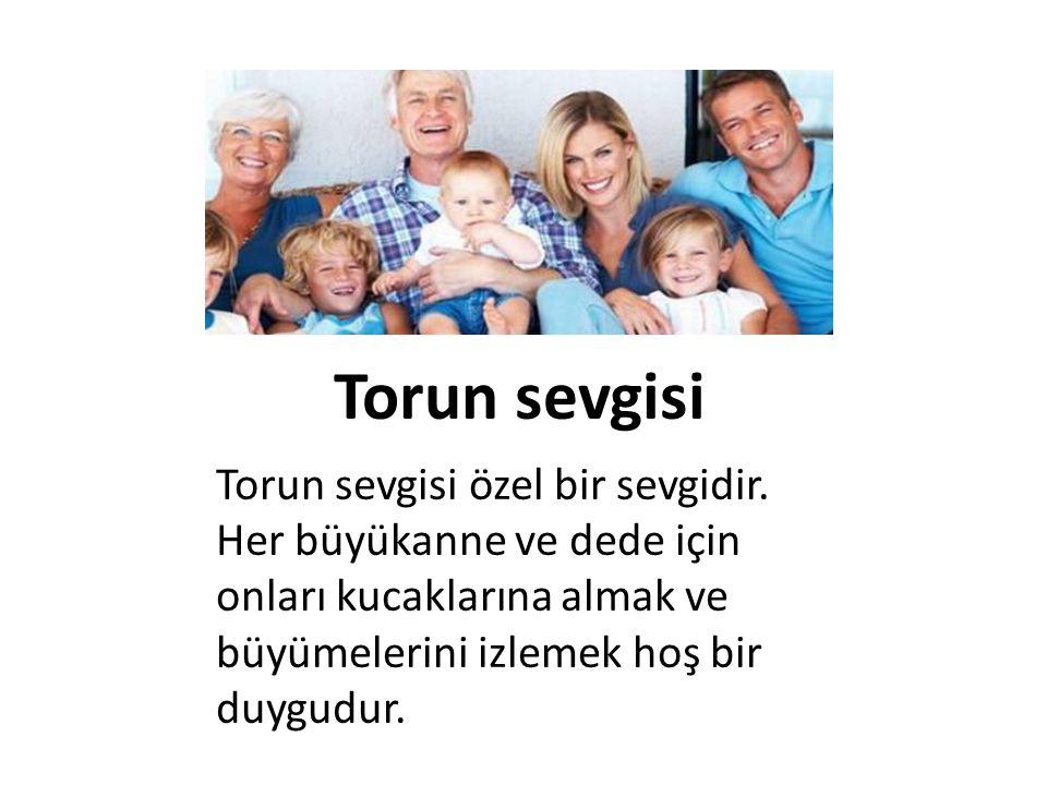 Torun sevgisi Torun sevgisi özel bir sevgidir. Her büyükanne ve dede için onları kucaklarına almak ve büyümelerini izlemek hoş bir duygudur.