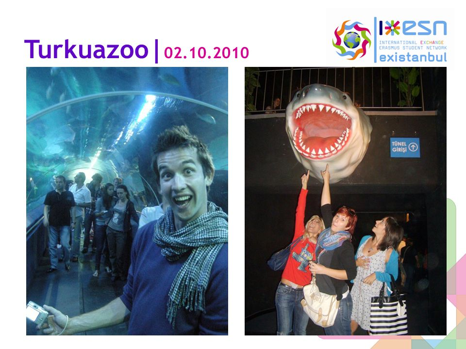 Turkuazoo| 02.10.2010