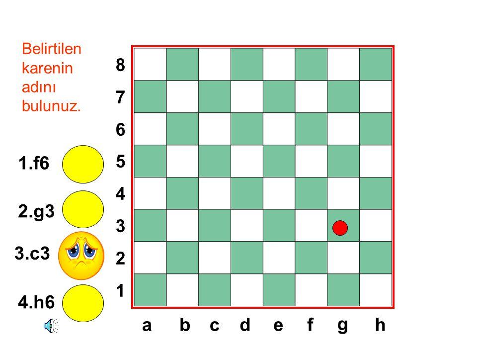 8765432187654321 dabcef g h Belirtilen karenin adını bulunuz. 1.f6 2.g3 3.c3 4.h6
