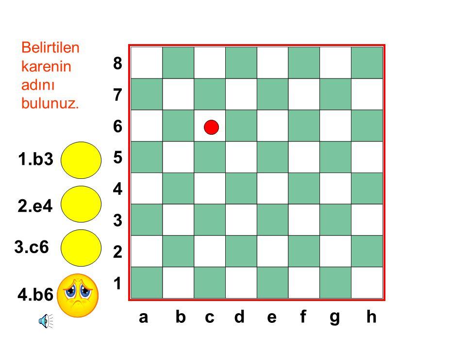 8765432187654321 dabcef g h Belirtilen karenin adını bulunuz. 1.b3 2.e4 3.c6 4.b6