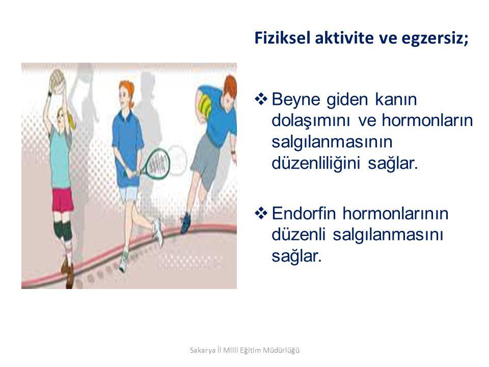Fiziksel aktivite ve egzersiz;  Beyne giden kanın dolaşımını ve hormonların salgılanmasının düzenliliğini sağlar.  Endorfin hormonlarının düzenli sa