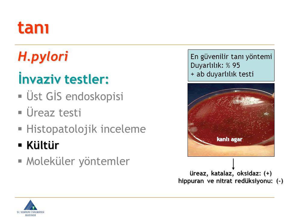İnvaziv testler: İnvaziv testler:  Üst GİS endoskopisi  Üreaz testi  Histopatolojik inceleme  Kültür  Moleküler yöntemler tanı H.pylori En güveni