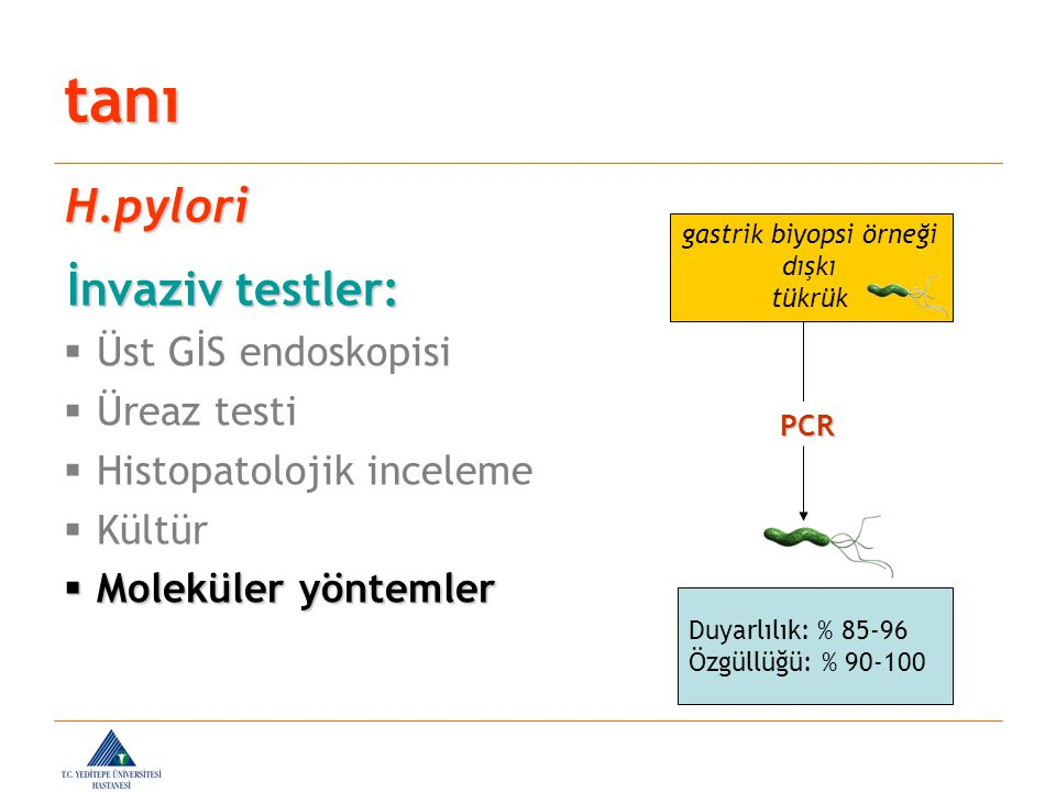 İnvaziv testler: İnvaziv testler:  Üst GİS endoskopisi  Üreaz testi  Histopatolojik inceleme  Kültür  Moleküler yöntemler tanı H.pylori PCR Duyar