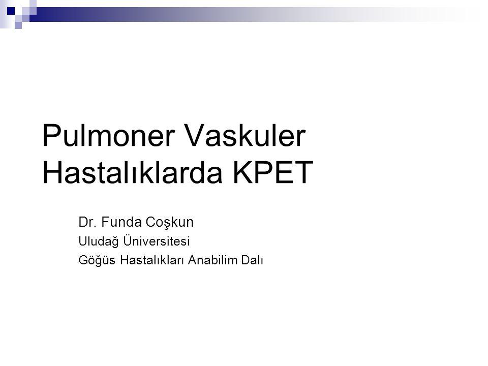 Pulmoner Vaskuler Hastalıklarda KPET Dr. Funda Coşkun Uludağ Üniversitesi Göğüs Hastalıkları Anabilim Dalı