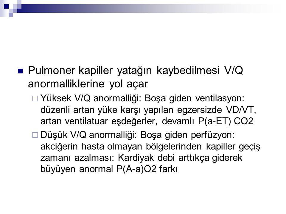 Pulmoner kapiller yatağın kaybedilmesi V/Q anormalliklerine yol açar  Yüksek V/Q anormalliği: Boşa giden ventilasyon: düzenli artan yüke karşı yapıla
