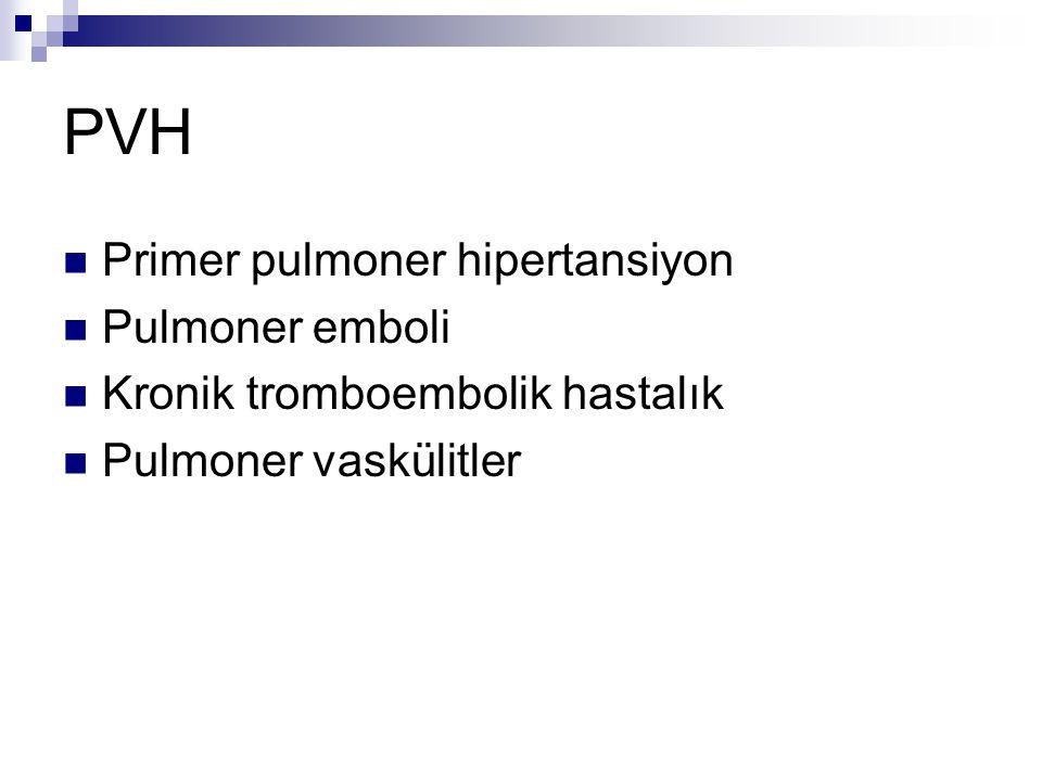 PVH Primer pulmoner hipertansiyon Pulmoner emboli Kronik tromboembolik hastalık Pulmoner vaskülitler