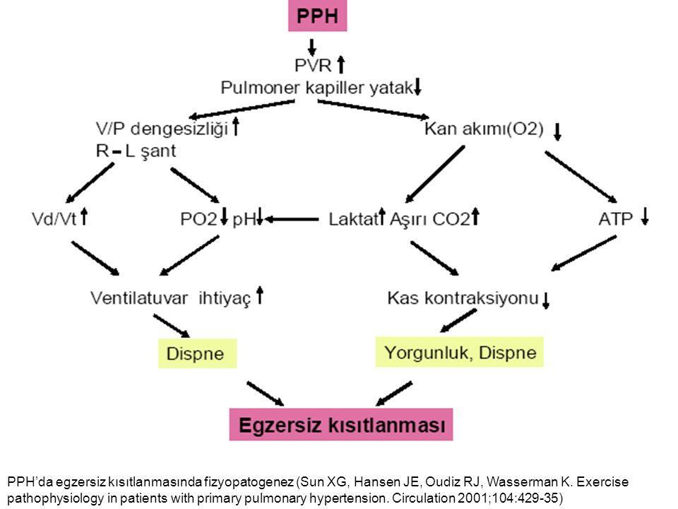 PPH'da egzersiz kısıtlanmasında fizyopatogenez (Sun XG, Hansen JE, Oudiz RJ, Wasserman K. Exercise pathophysiology in patients with primary pulmonary