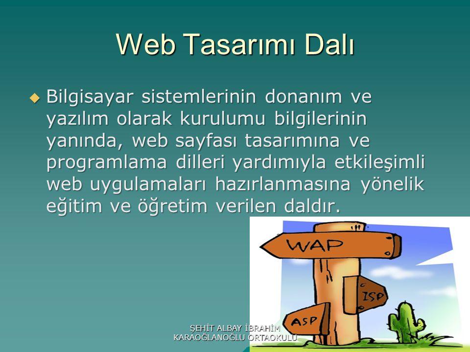 Web Tasarımı Dalı  Bilgisayar sistemlerinin donanım ve yazılım olarak kurulumu bilgilerinin yanında, web sayfası tasarımına ve programlama dilleri yardımıyla etkileşimli web uygulamaları hazırlanmasına yönelik eğitim ve öğretim verilen daldır.