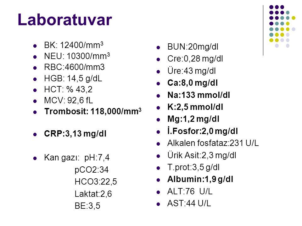 Laboratuvar BK: 12400/mm 3 NEU: 10300/mm 3 RBC:4600/mm3 HGB: 14,5 g/dL HCT: % 43,2 MCV: 92,6 fL Trombosit: 118,000/mm 3 CRP:3,13 mg/dl Kan gazı: pH:7,4 pCO2:34 HCO3:22,5 Laktat:2,6 BE:3,5 BUN:20mg/dl Cre:0,28 mg/dl Üre:43 mg/dl Ca:8,0 mg/dl Na:133 mmol/dl K:2,5 mmol/dl Mg:1,2 mg/dl İ.Fosfor:2,0 mg/dl Alkalen fosfataz:231 U/L Ürik Asit:2,3 mg/dl T.prot:3,5 g/dl Albumin:1,9 g/dl ALT:76 U/L AST:44 U/L