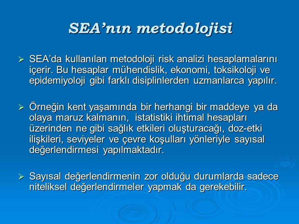SEA'nın metodolojisi  SEA'da kullanılan metodoloji risk analizi hesaplamalarını içerir. Bu hesaplar mühendislik, ekonomi, toksikoloji ve epidemiyoloj