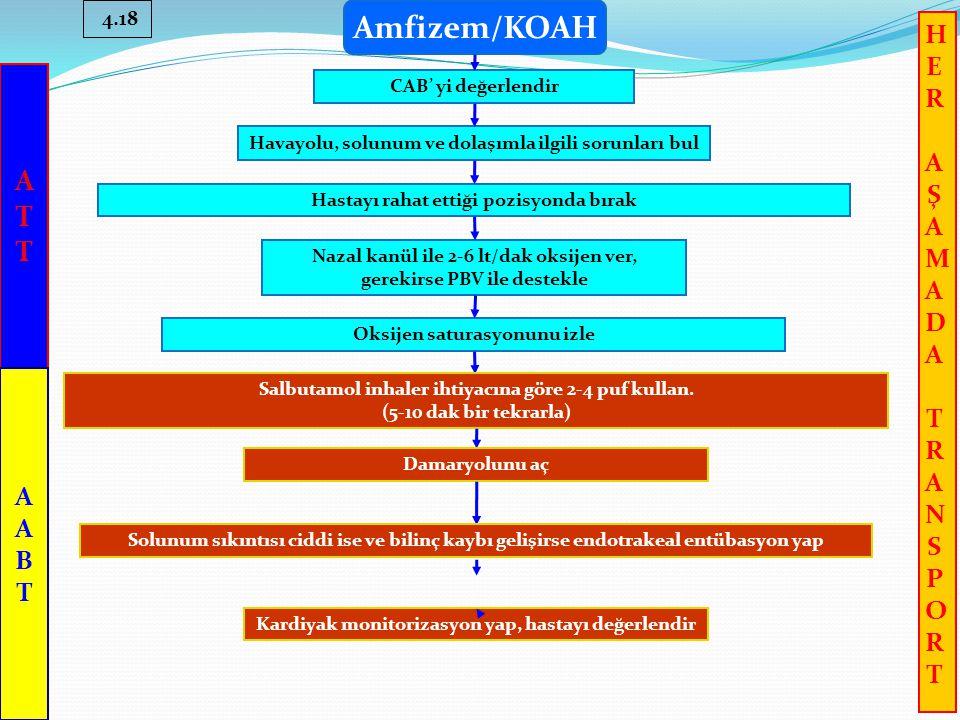 Amfizem/KOAH 4.18 CAB' yi değerlendir Havayolu, solunum ve dolaşımla ilgili sorunları bul Hastayı rahat ettiği pozisyonda bırak Nazal kanül ile 2-6 lt