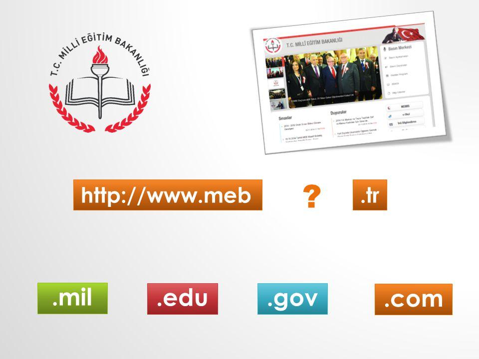 http://www.meb.tr.com.mil.gov.edu ?