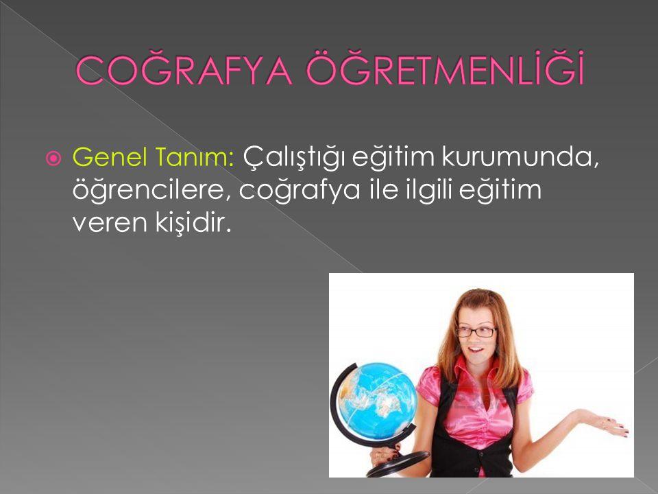  Genel Tanım: Çalıştığı eğitim kurumunda, öğrencilere, coğrafya ile ilgili eğitim veren kişidir.