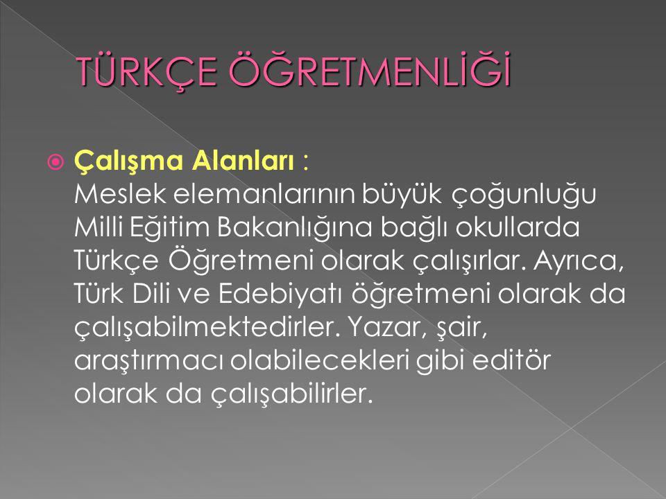  Çalışma Alanları : Meslek elemanlarının büyük çoğunluğu Milli Eğitim Bakanlığına bağlı okullarda Türkçe Öğretmeni olarak çalışırlar.
