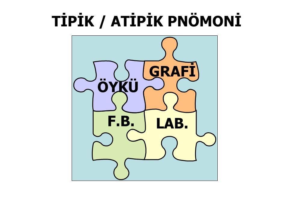 ÖYKÜ GRAFİ F.B. LAB. TİPİK / ATİPİK PNÖMONİ