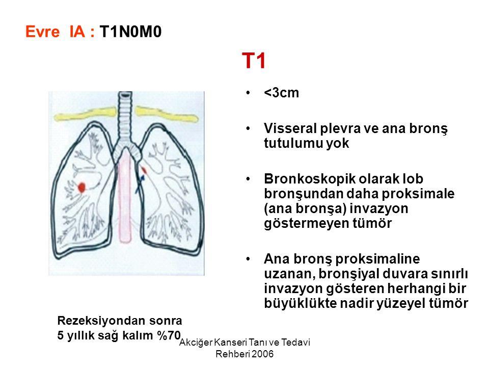 Akciğer Kanseri Tanı ve Tedavi Rehberi 2006 <3cm Visseral plevra ve ana bronş tutulumu yok Bronkoskopik olarak lob bronşundan daha proksimale (ana bro