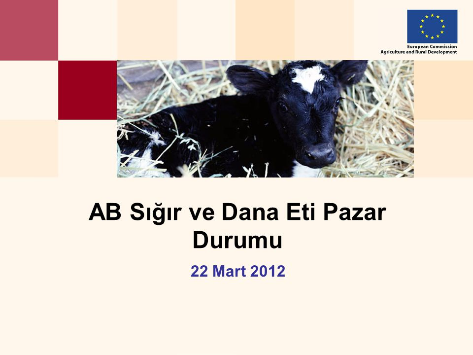 22 Mart 2012 AB Sığır ve Dana Eti Pazar Durumu
