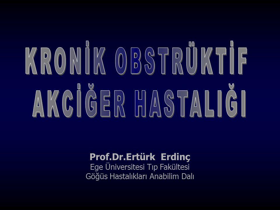 Prof.Dr.Ertürk Erdinç Ege Üniversitesi Tıp Fakültesi Göğüs Hastalıkları Anabilim Dalı