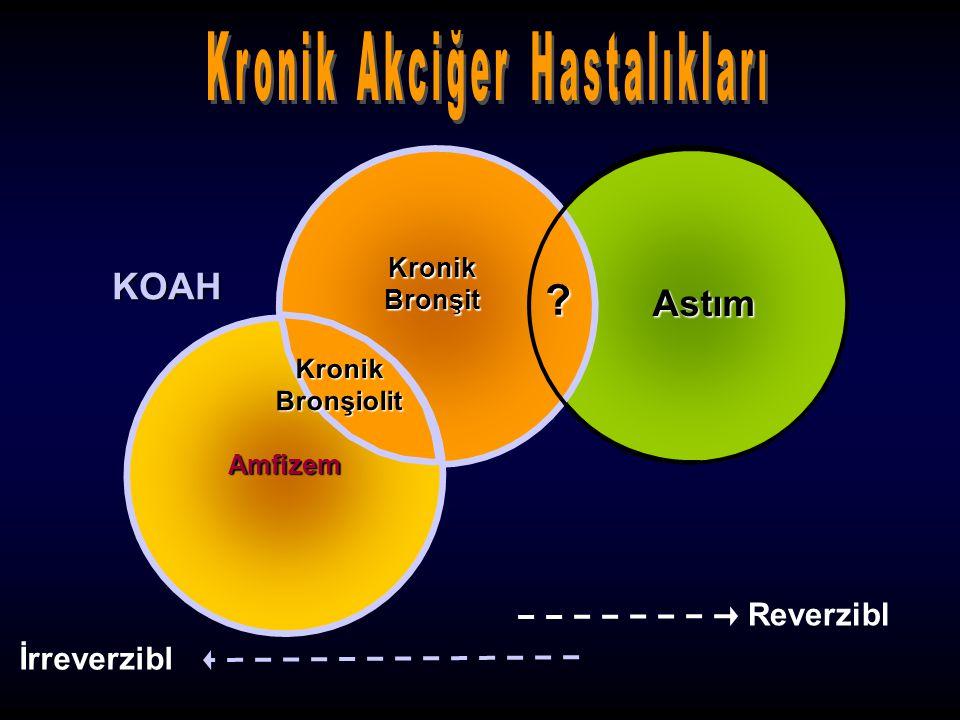 Kronik Bronşit Astım Amfizem Kronik Bronşiolit ? Reverzibl İrreverzibl KOAH