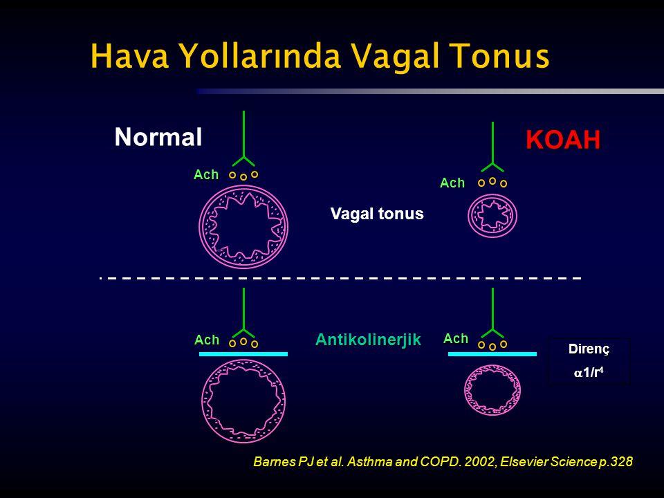 Normal Vagal tonus Hava Yollarında Vagal Tonus KOAH Antikolinerjik Barnes PJ et al. Asthma and COPD. 2002, Elsevier Science p.328 Ach Ach Ach Ach Dire