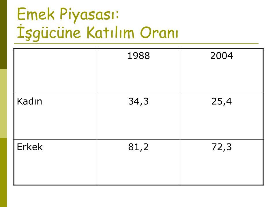 Emek Piyasası: İşgücüne Katılım Oranı 19902004 AB-1567,370,8 OECD69,370,1 Türkiye59,451,5