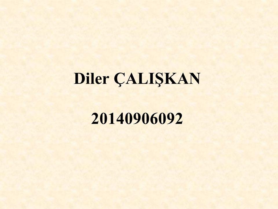 Diler ÇALIŞKAN 20140906092