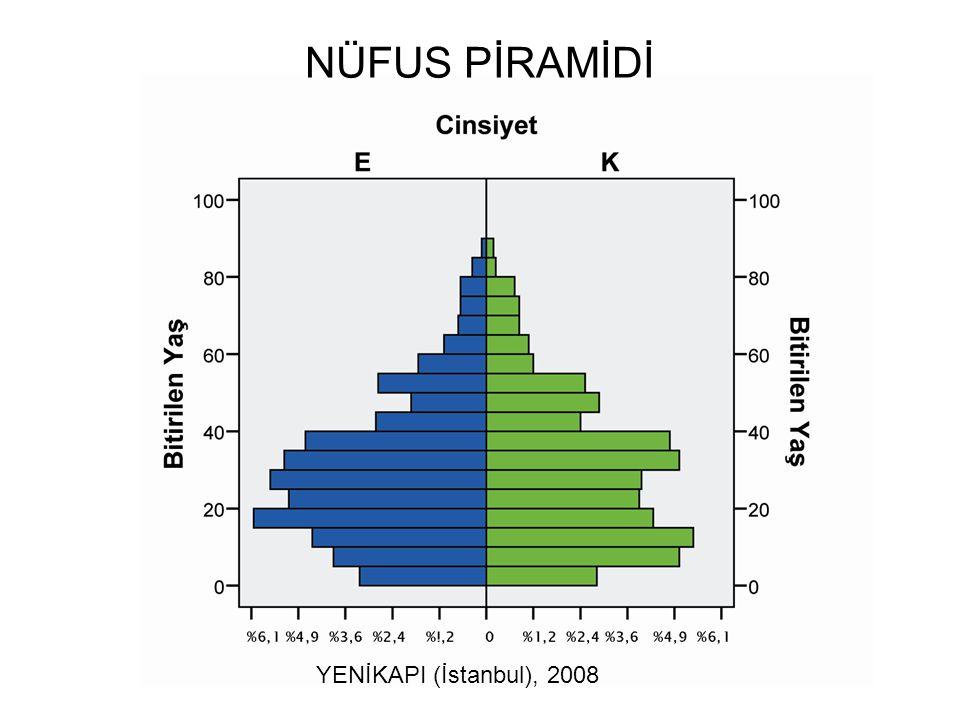 YENİKAPI (İstanbul), 2008 NÜFUS PİRAMİDİ