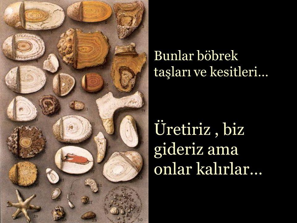 Bazı taşları da biz üretiriz,kendi bedenimizde…