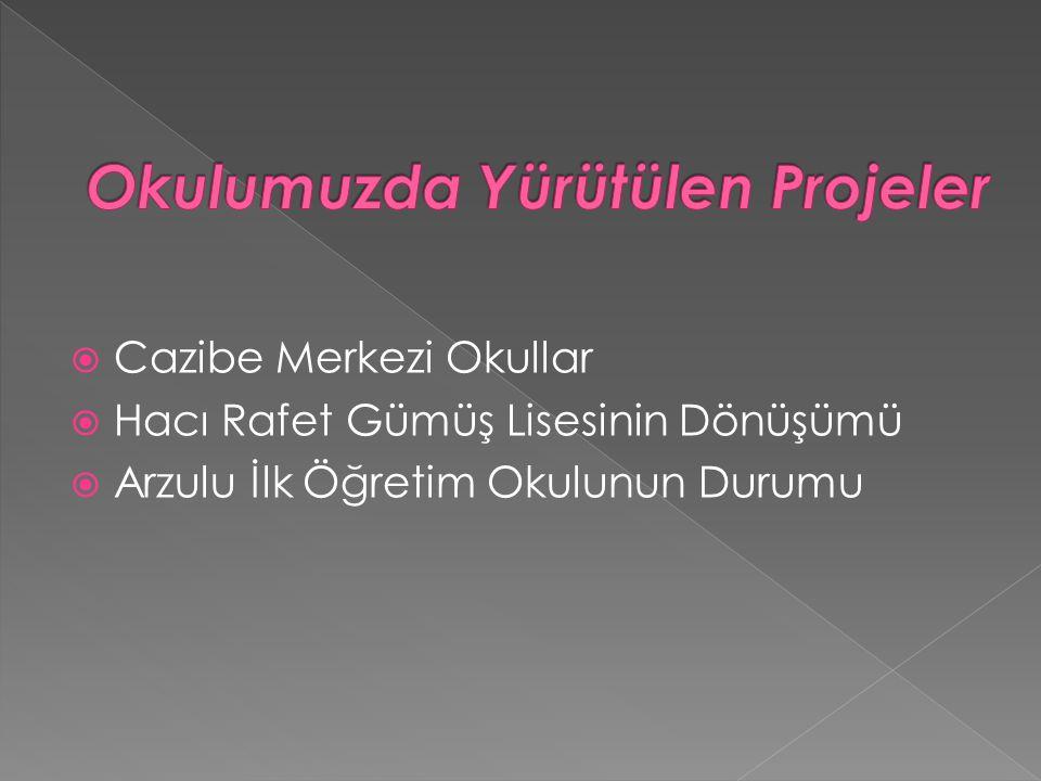  Cazibe Merkezi Okullar  Hacı Rafet Gümüş Lisesinin Dönüşümü  Arzulu İlk Öğretim Okulunun Durumu