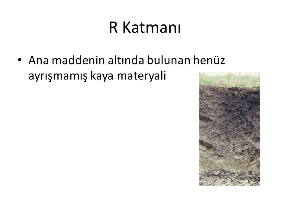 R Katmanı Ana maddenin altında bulunan henüz ayrışmamış kaya materyali
