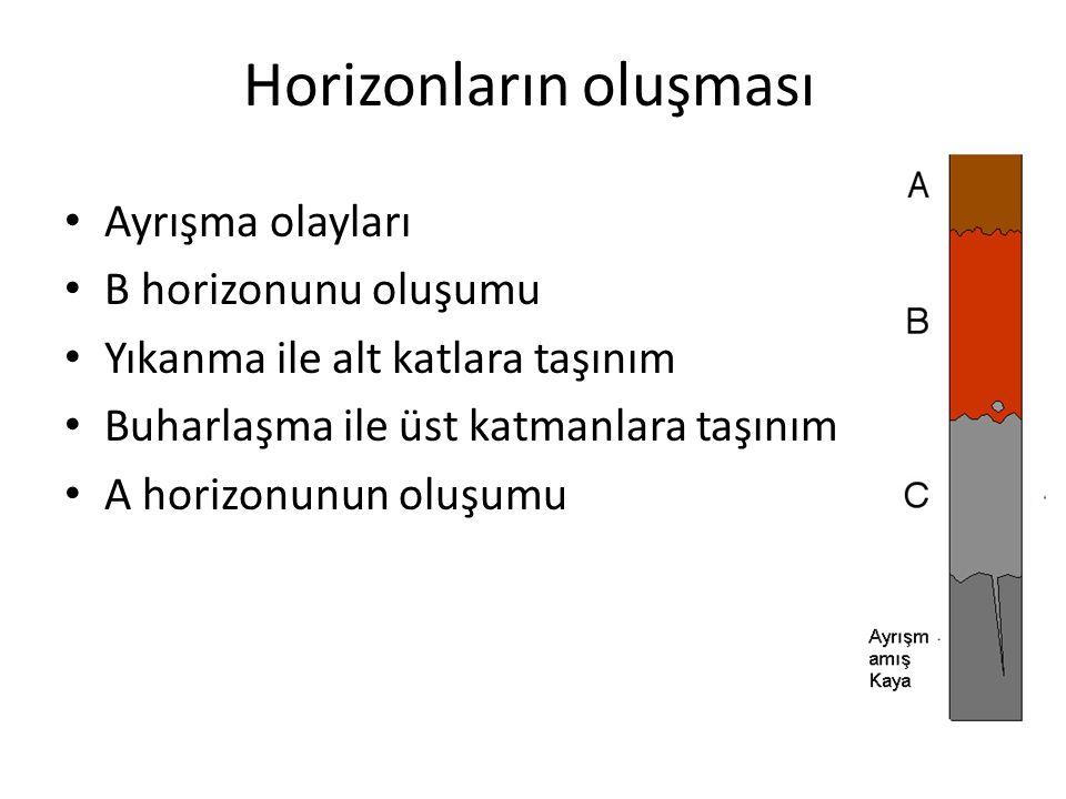 Horizonların oluşması Ayrışma olayları B horizonunu oluşumu Yıkanma ile alt katlara taşınım Buharlaşma ile üst katmanlara taşınım A horizonunun oluşum