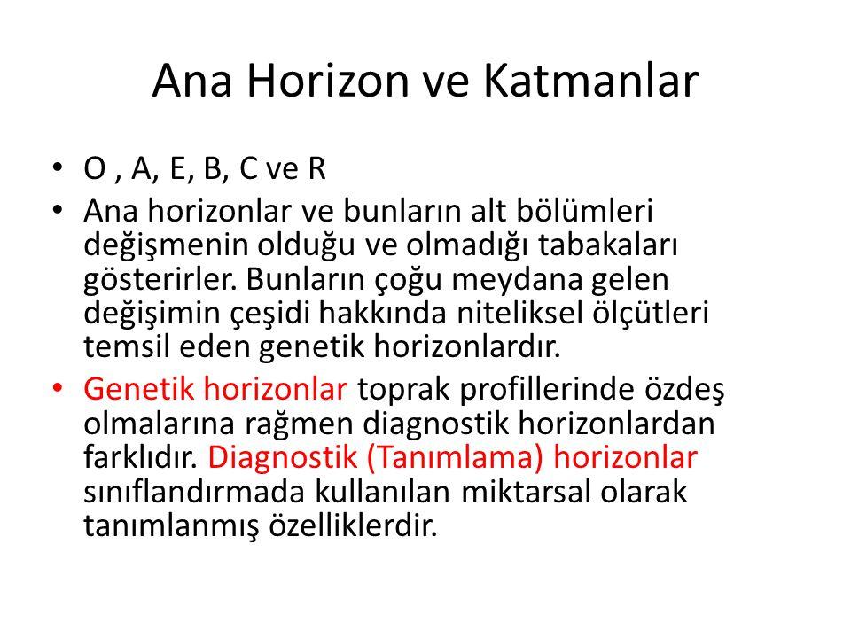 Ana Horizon ve Katmanlar O, A, E, B, C ve R Ana horizonlar ve bunların alt bölümleri değişmenin olduğu ve olmadığı tabakaları gösterirler. Bunların ço